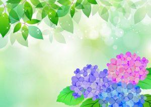 image-オフィスデリスタッフの活動日記【6/3~6/7】 | オフィスセラピストの活動日記